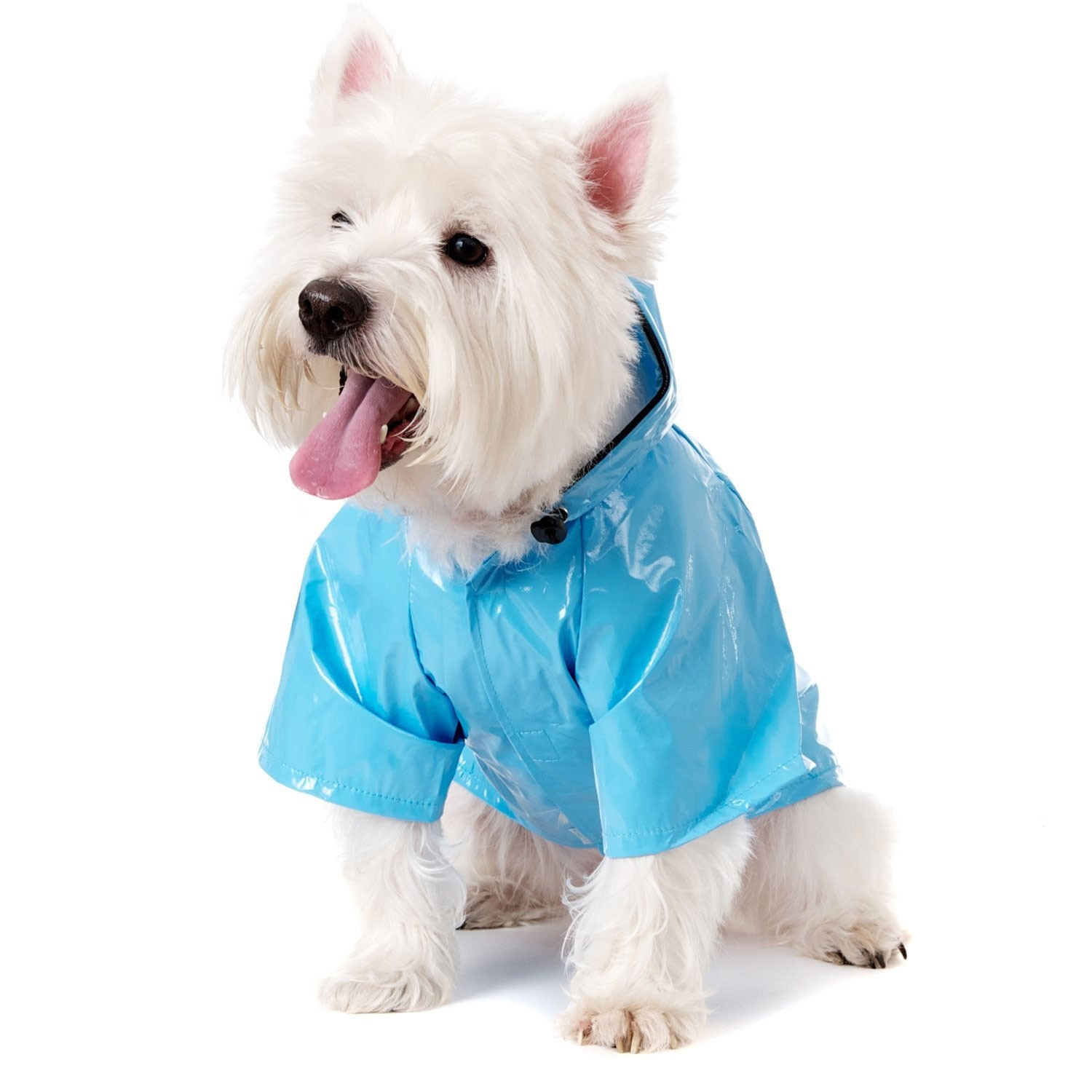 duck-egg-blue-dog-raincoat_3