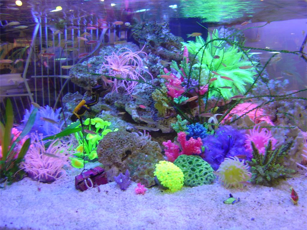 Artificial plant can also be a good choice for your for Aquarium coral decoration