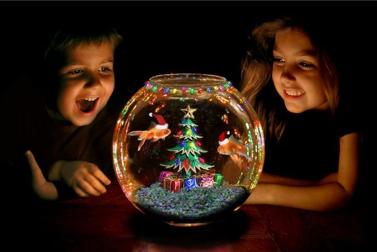 Christmas fish aquarium decorate ideas wishforpets for Halloween fish tank decorations