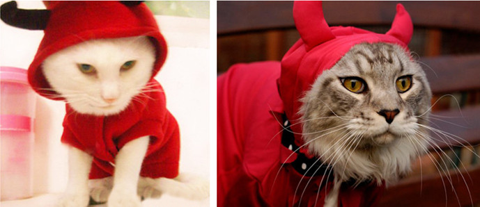 Cat devil costumes
