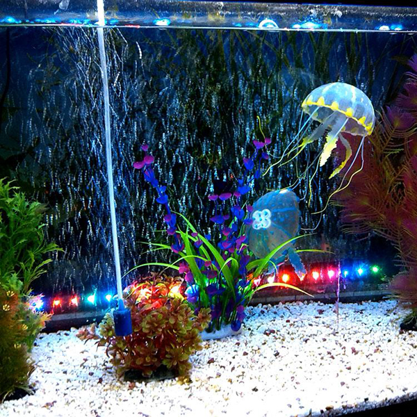 Fish tank decoration tips wishforpets for How to decorate fish tank