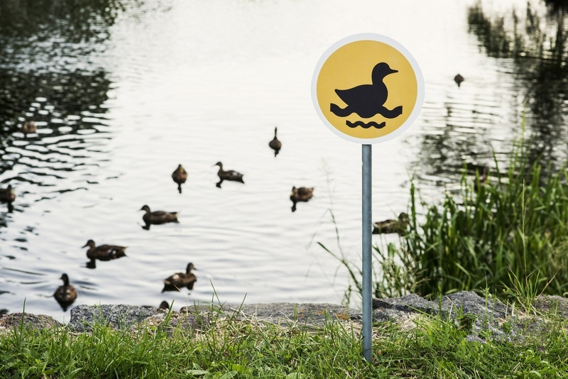 road signs for animals