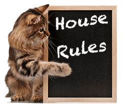 Tips On House Training A Cat Wishforpets