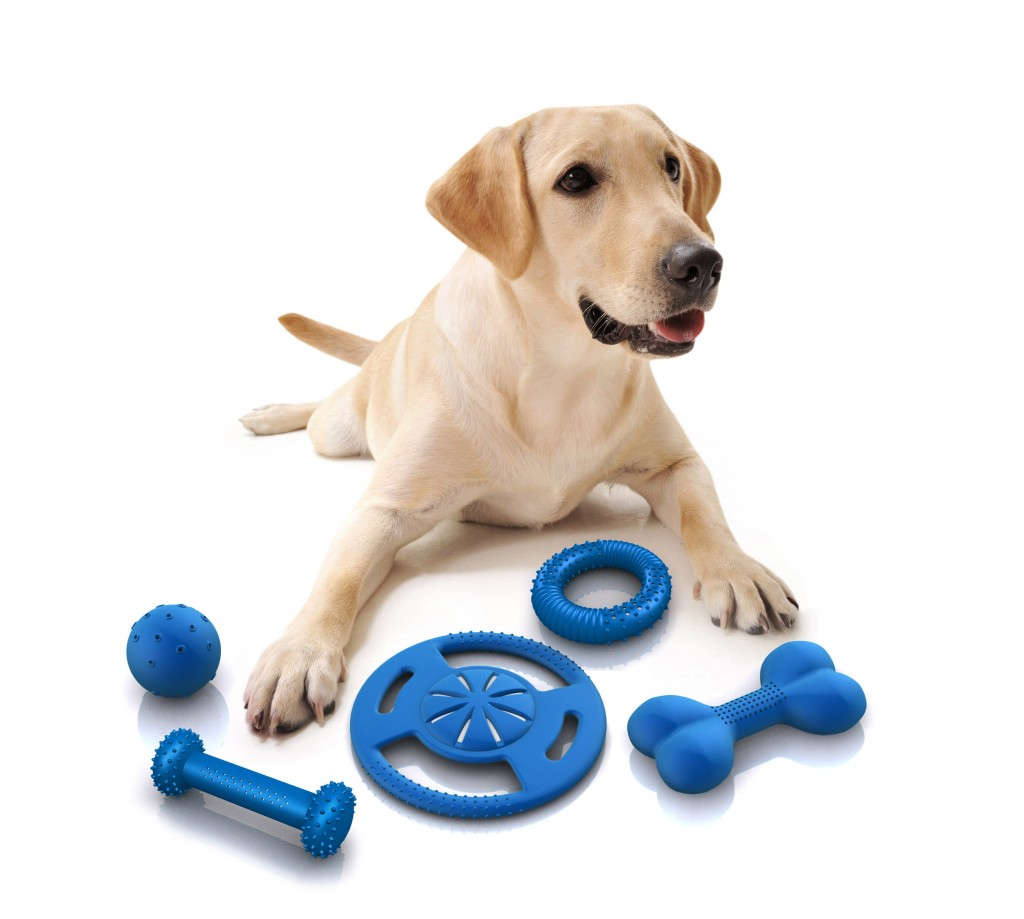 pet supplies online Marshallspetzone is india's leading online pet shop with a wide range of dog, cat, bird & small animal supplies, pet food, cloths & toys at best price free shipping.