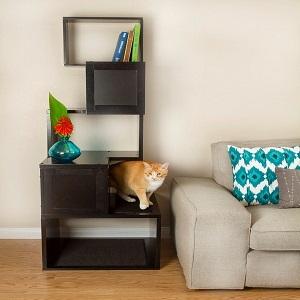 How Can I Protect My Furniture From Cats?