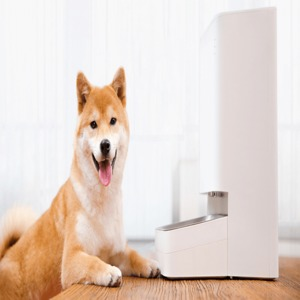 Why Do You Need a Smart Pet Feeder?